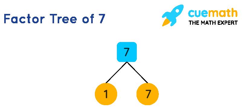 Factor tree of 7