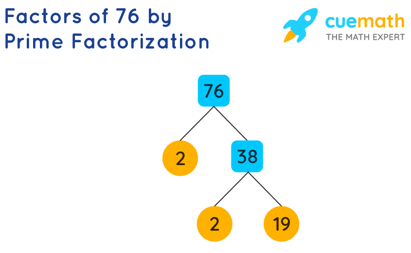 factor tree for 76