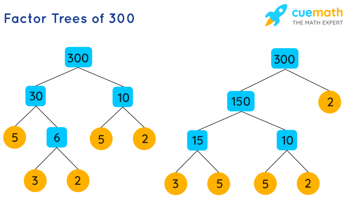 Factor Trees of 300
