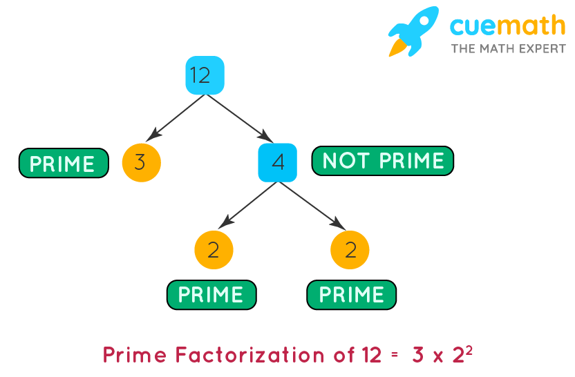 Factors of 12 by prime factorization