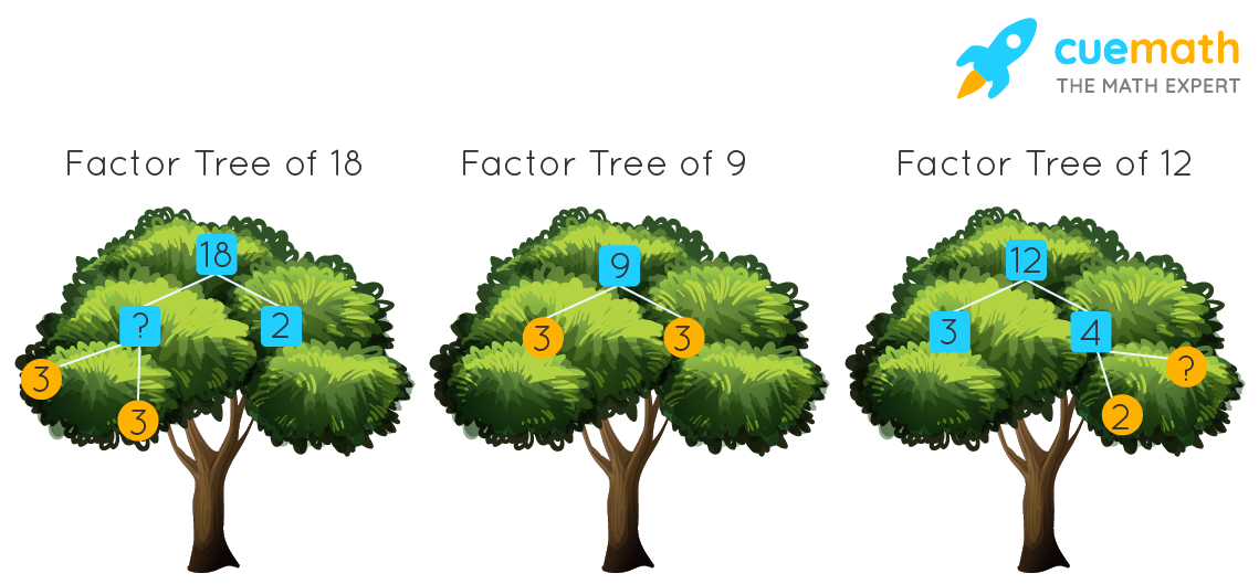 Missing factors of 18 and 12 in factor tree