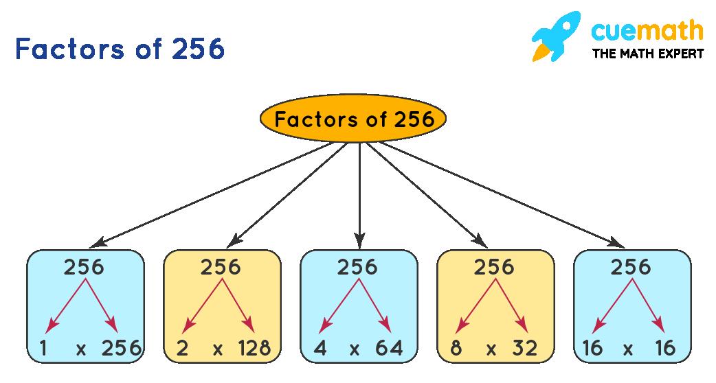 factors  of 256