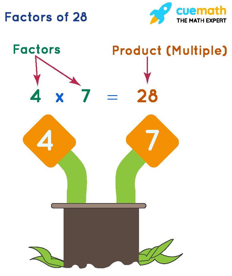 Factors of 28