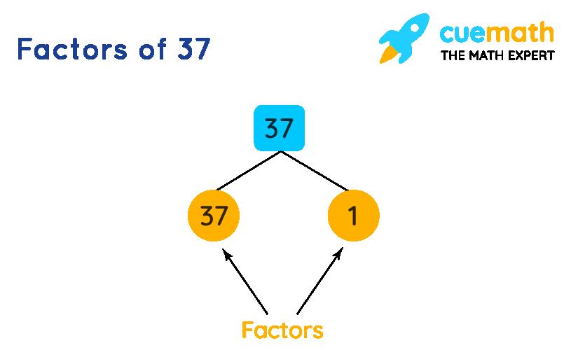 Factors of 37