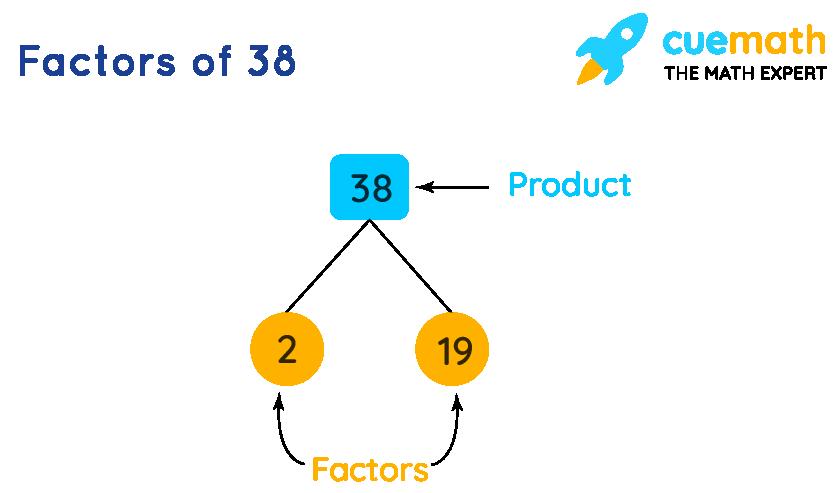 Factors of 38