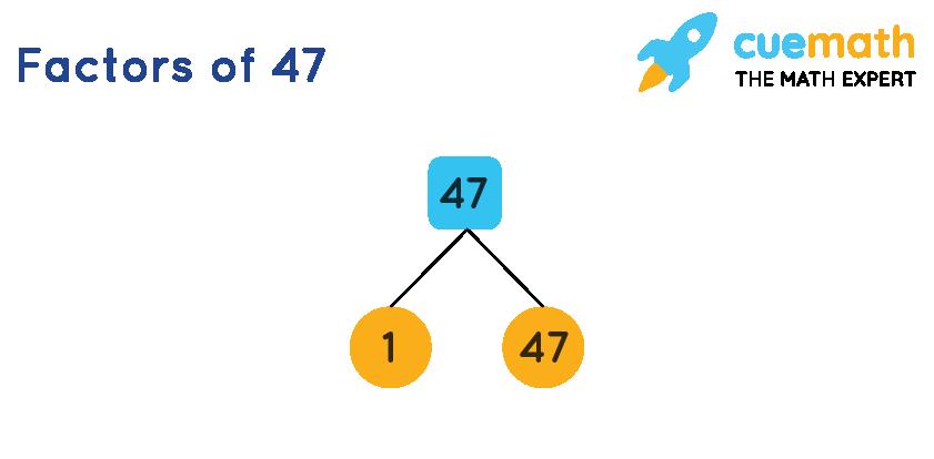 Factors of 47