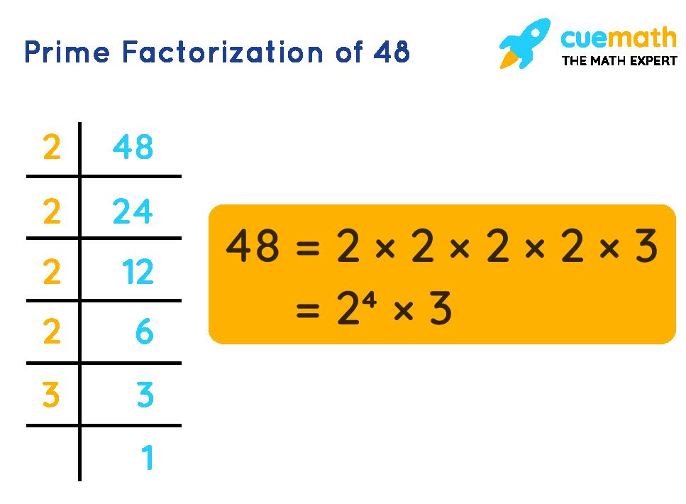 Factors of 48 by Prime Factorization
