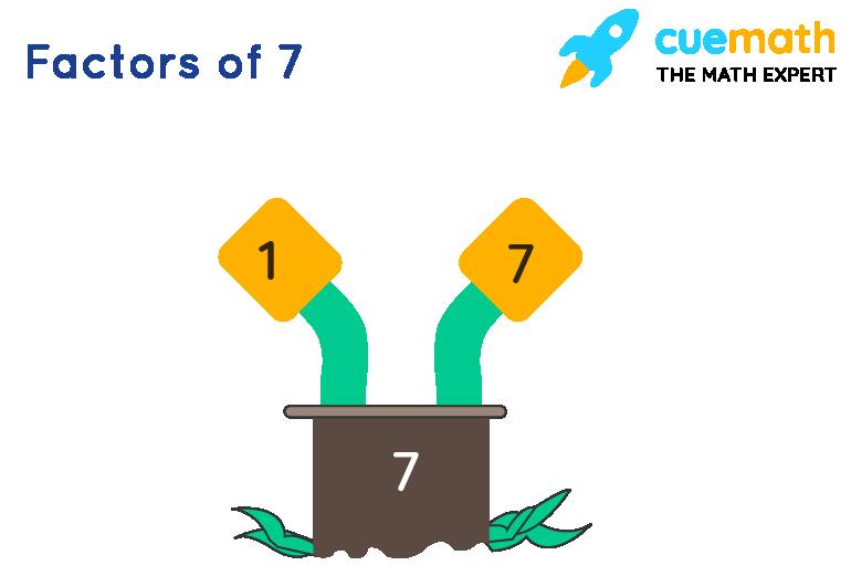 Factors of 7