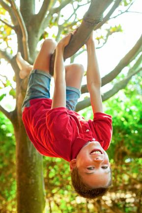 child hanging up side down on a tree