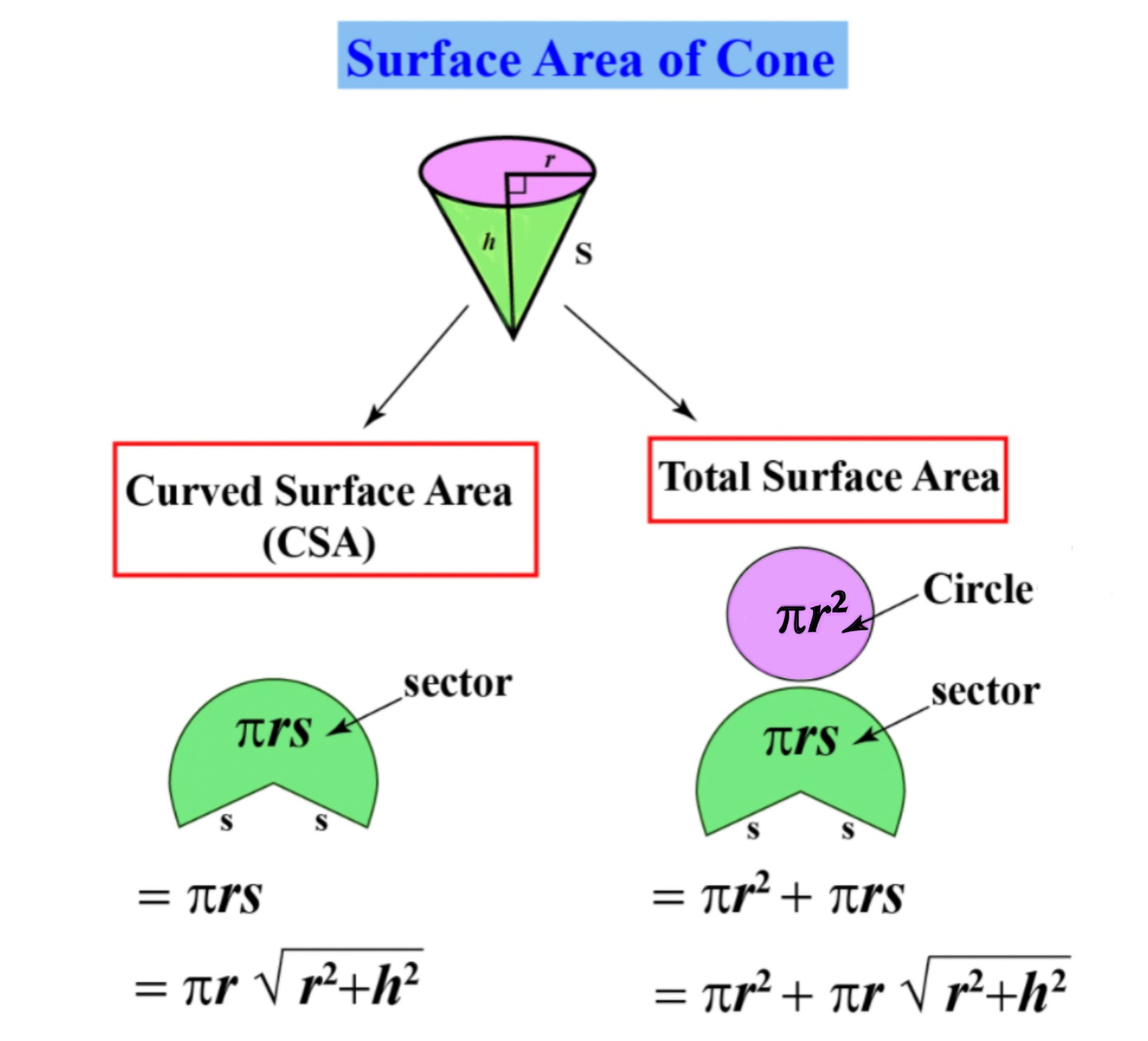 Surface areas of cone