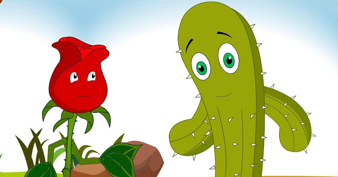 Rose and cactus