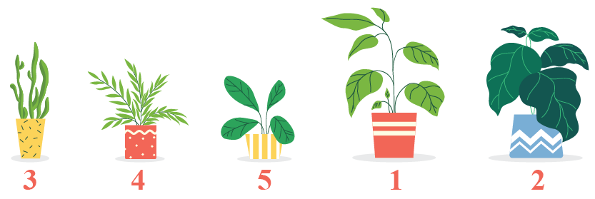Ordering of plants