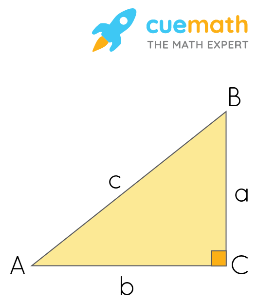 The hypotenuse c, opposite the right angle, is the longest side. The legs are shorter and may be the same or different lengths, and are perpendicular to each other in a right triangle.