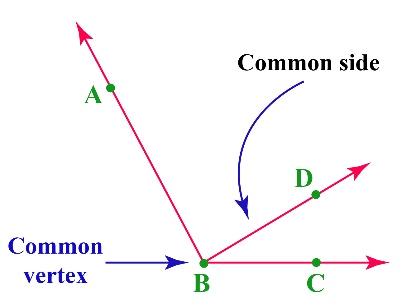 Adjacent angles, common vertex