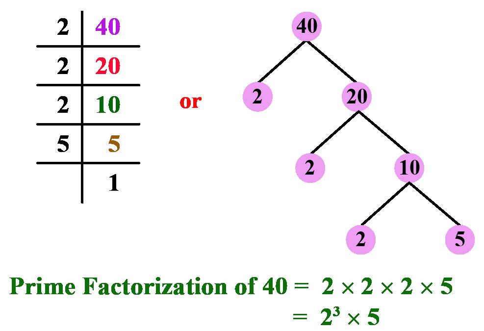 prime factorization of 40