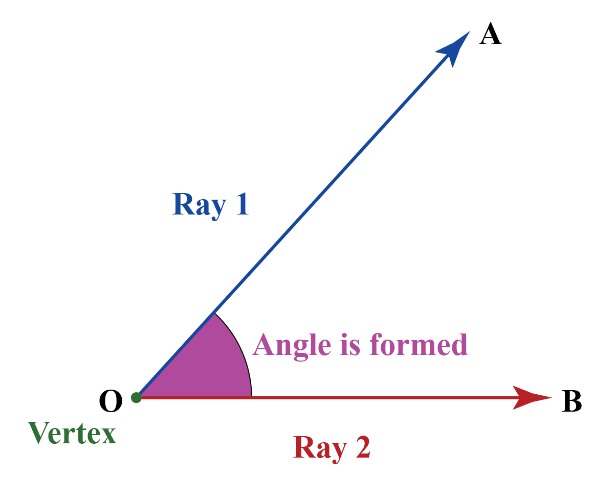 Acute angle geometry: When two rays meet and an angle is formed that is greater than 0 degrees and less than 90 degrees, it is called an acute angle.