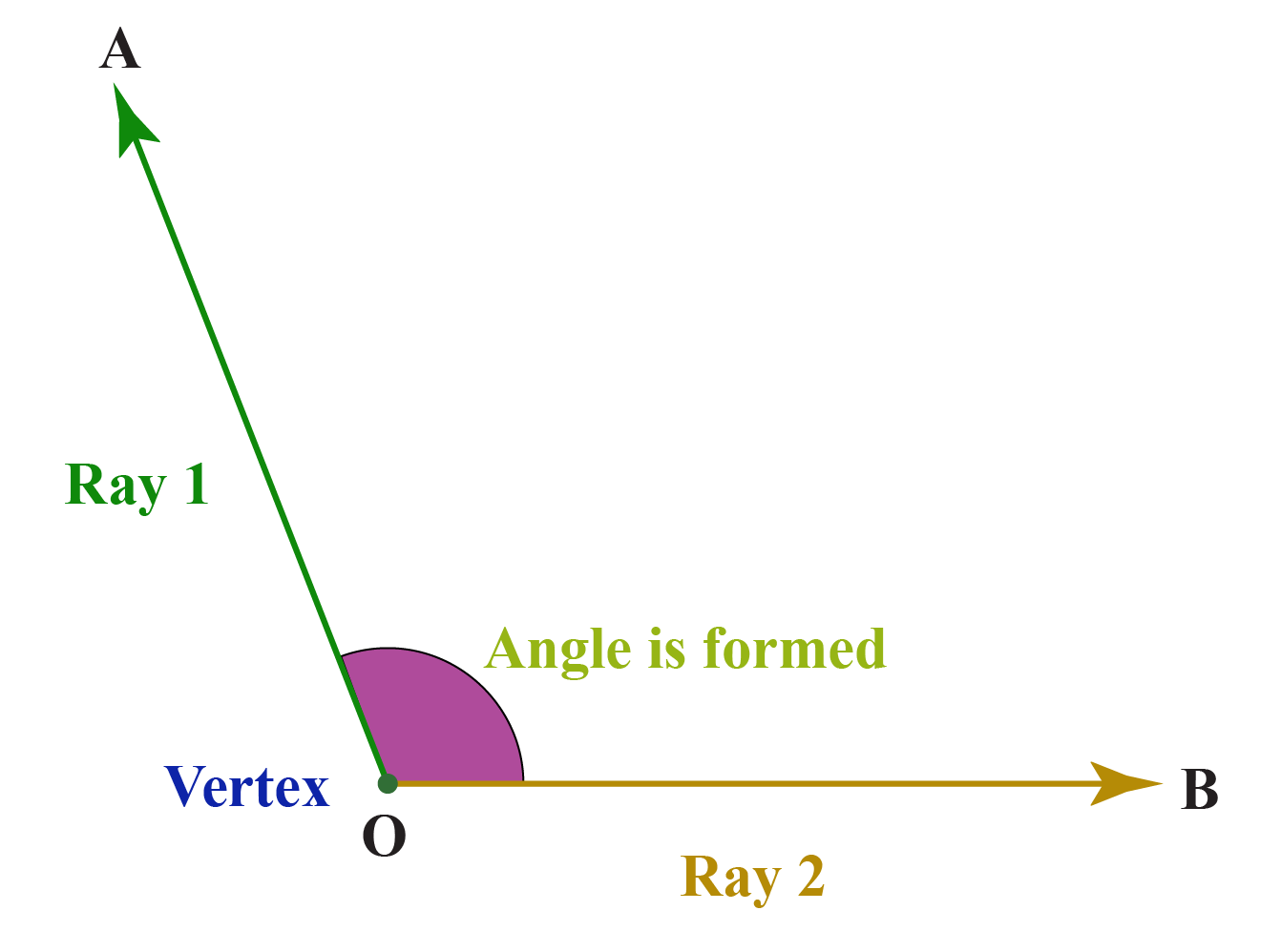 An angle is formed when 2 rays meet