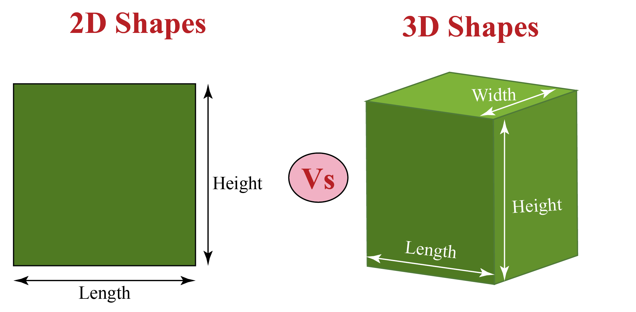 2D Vs 3D shapes in maths