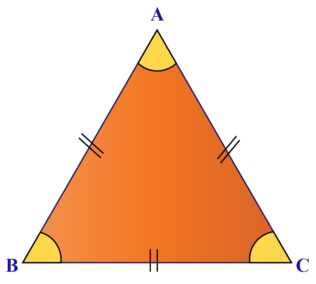 Equilateral or equiangular triangle has all sides and all angles equal.