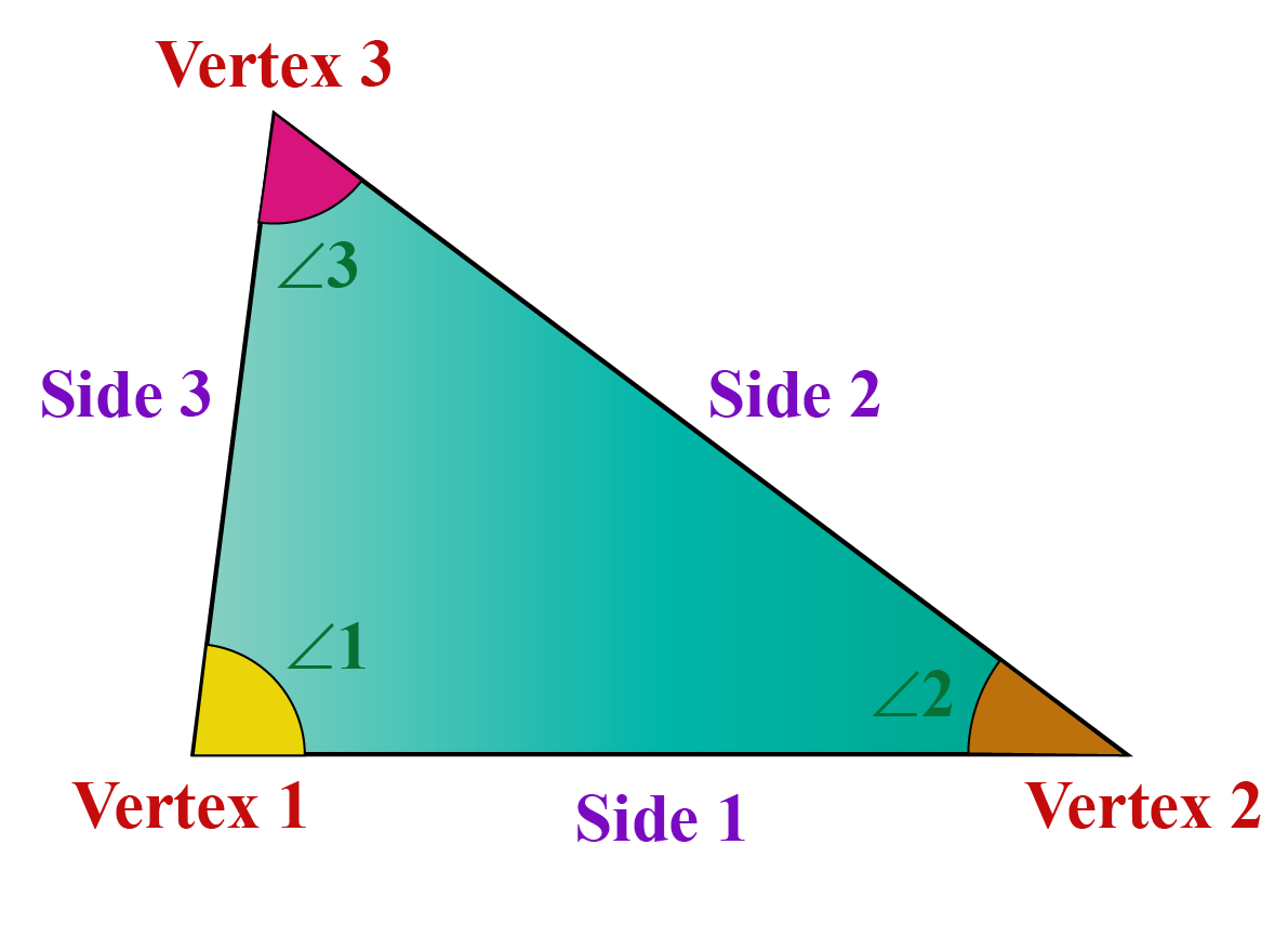 A triangle has 3 angles and 3 sides