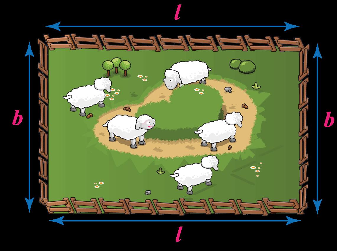 Rectangular shape farm.