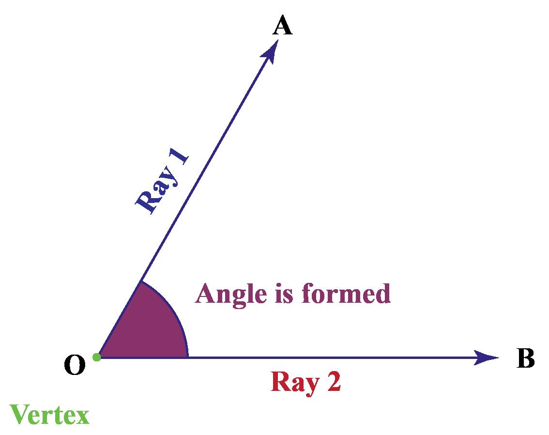 vertex definition maths