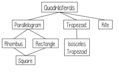 Quadrilaterals are classified