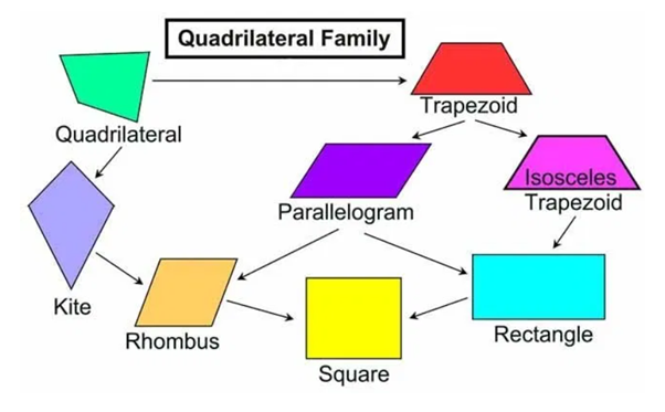 Quadrilaterals are categorized into 6 types depending on their sides