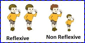 reflexive and non reflexive