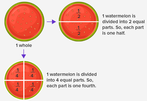 concept of fractions in watermelon