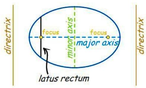 LATUS RECTUM