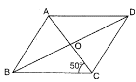 ABCD is a rhombus find the measure of angle ADB