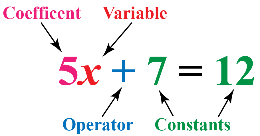 Variables & Constants in Mathematics