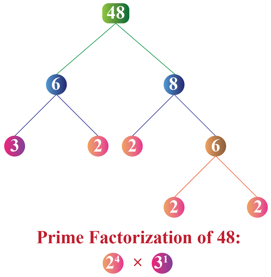 LCM using fundamental theorem of arithmetic: Prime factorization of 48