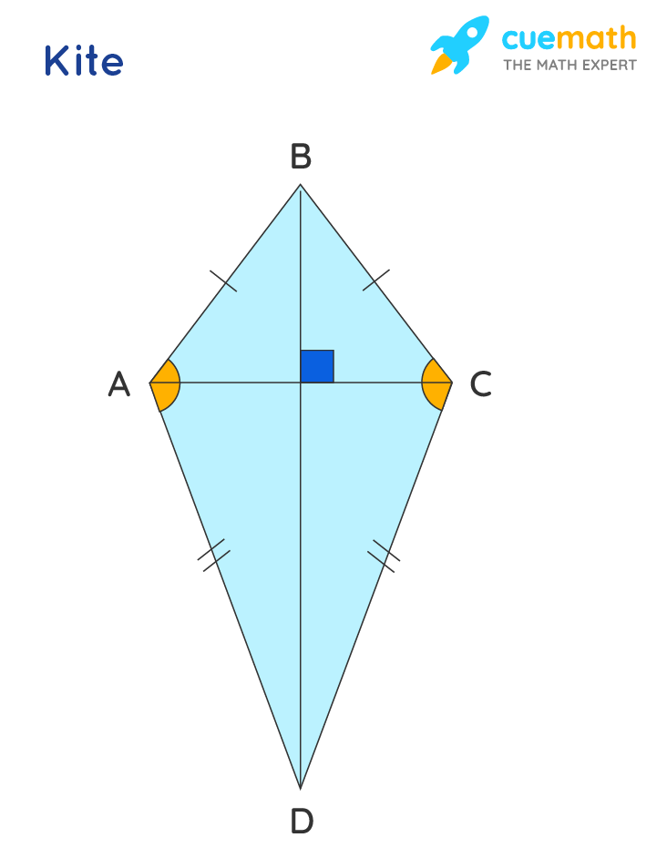 Kite is a special quadrilateral