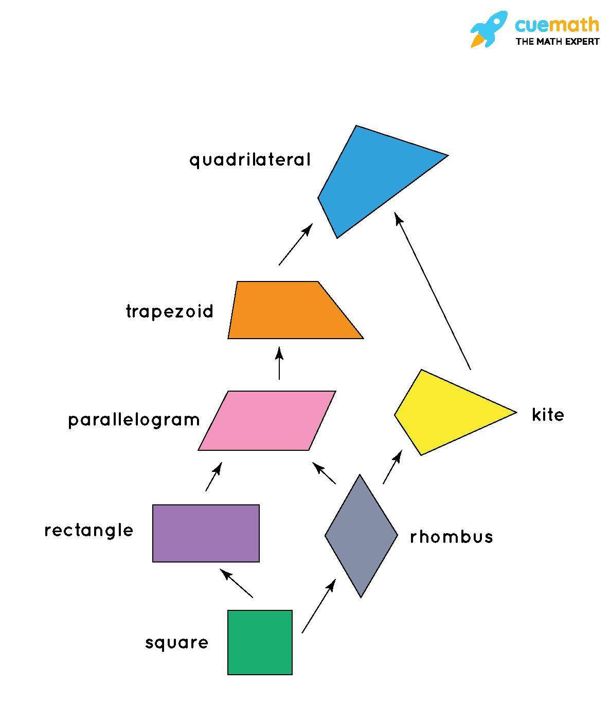 quadrilateral tree