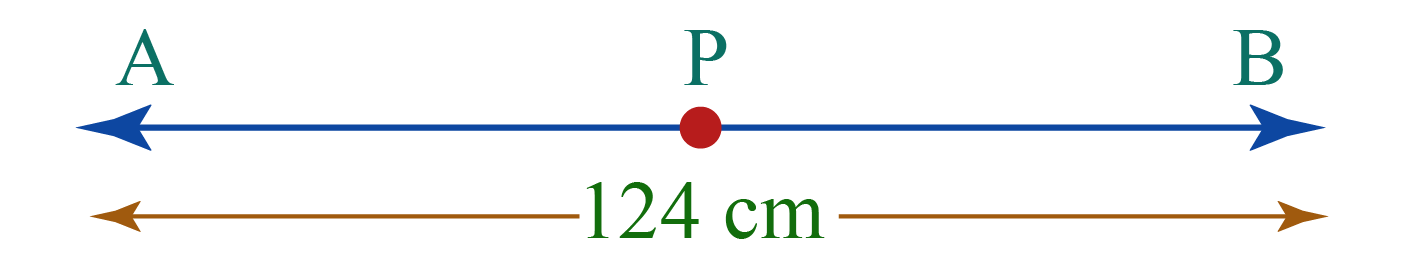 a line segment AB having a mid-point P that divides the line segment in two portions