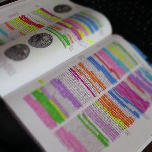 R.D. or R.S. math book