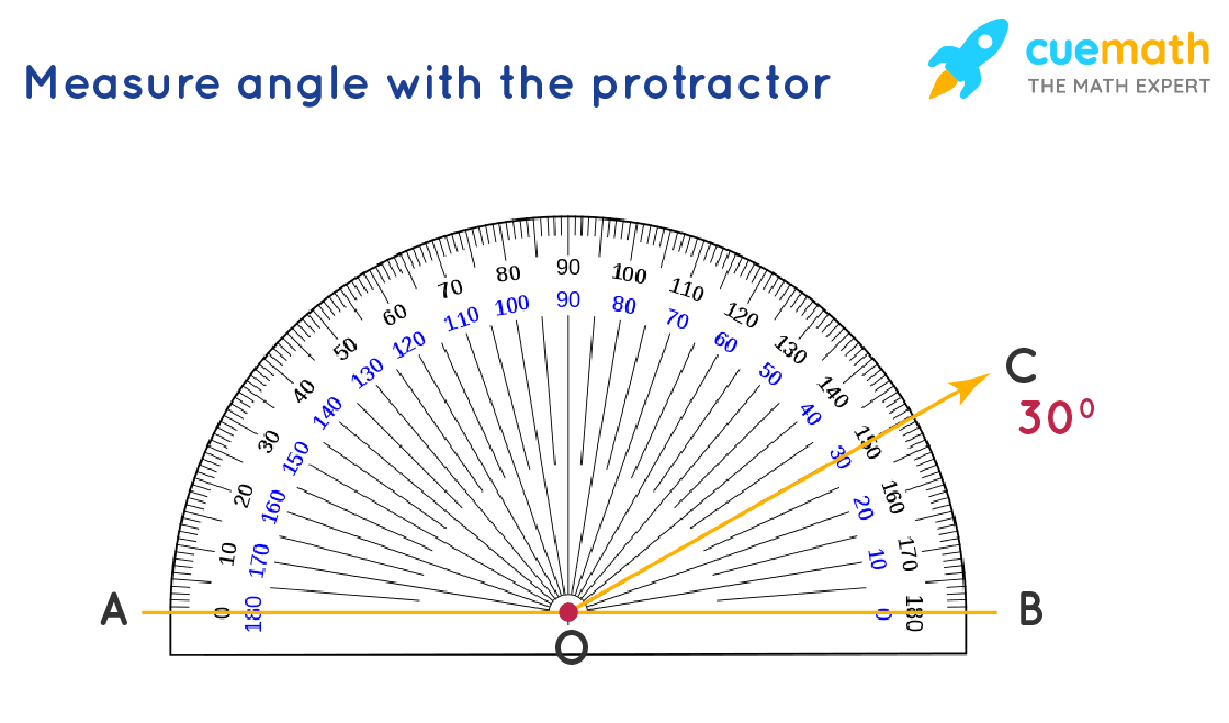 measure an angle with a protractor