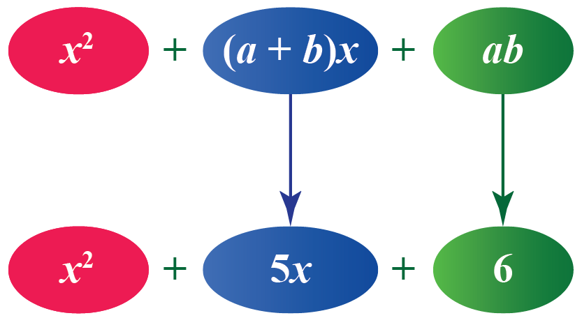 Example showing Standard form of polynomial