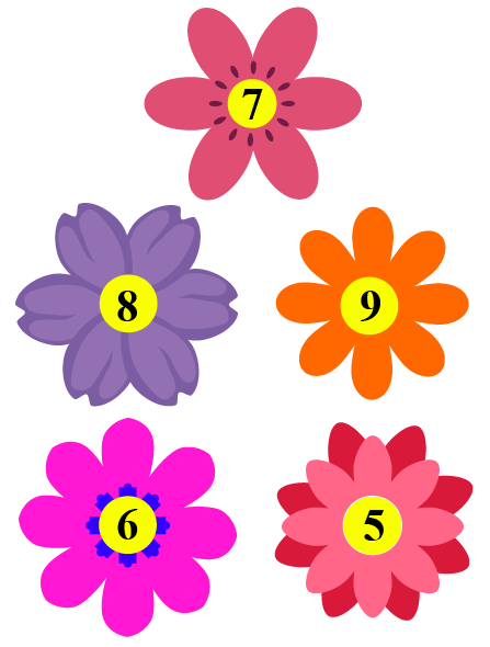 The value of k on flowers.
