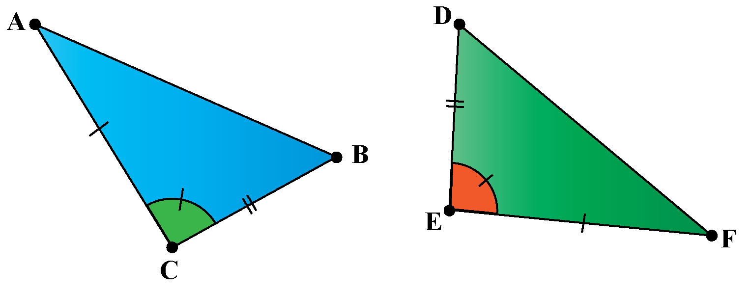 Explaining the congruence of triangles using SSS Criterion of Congruence