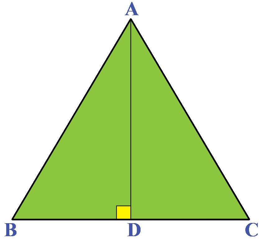Triangle ABC is an isosceles triangle.