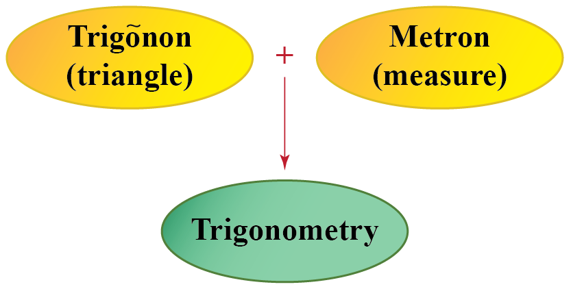 "The word ""Trigonometry"" originated from the words, ""Trigonon"" which means ""triangle"" and ""Metron"" which means ""to measure."""