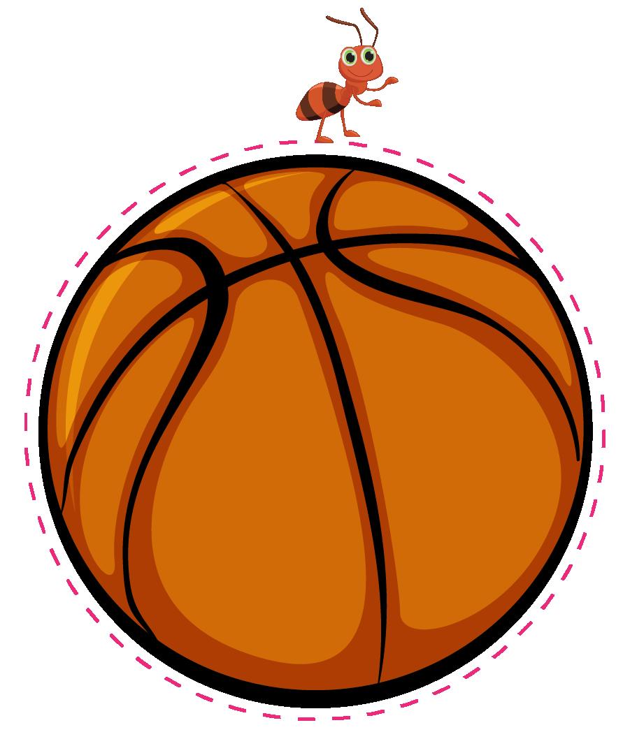 ant on basketball, earth