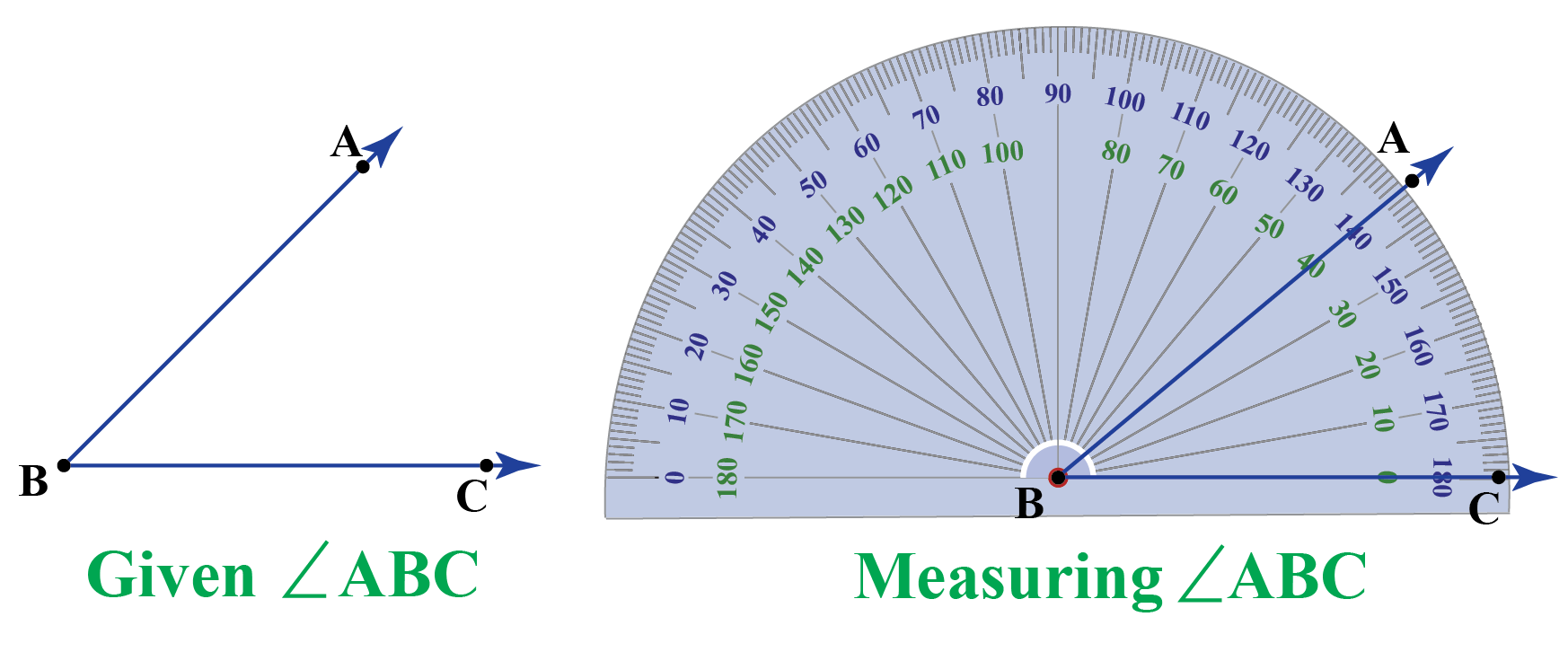 How to Measure Degrees using a protactor