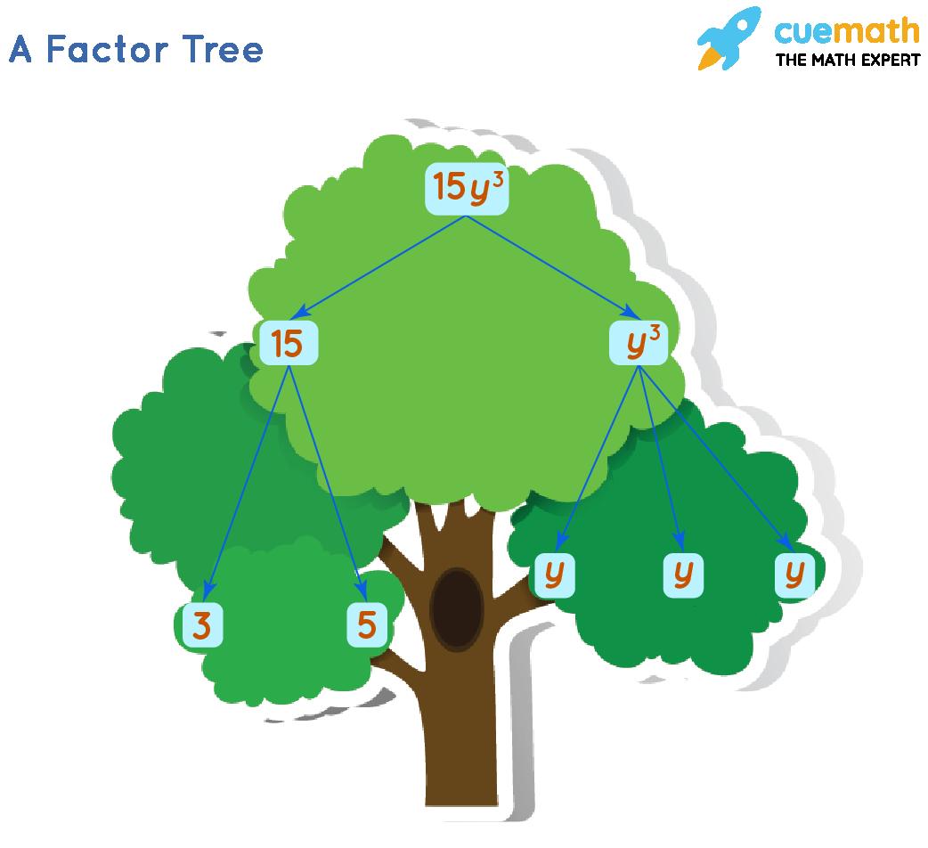 A Factor Tree