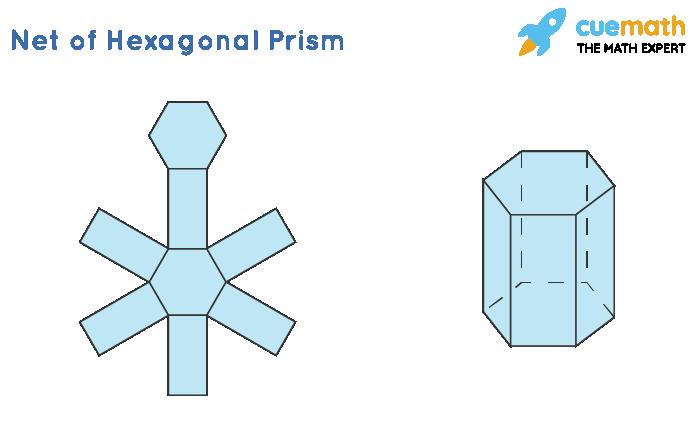 Net of Hexagonal Prism