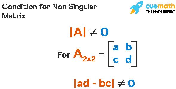 Condition for Non Singular Matrix