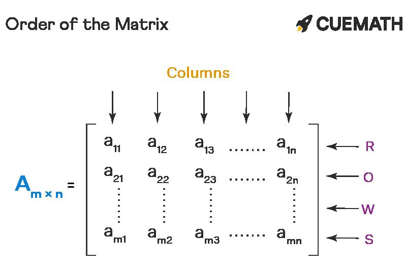 Order of the Matrix